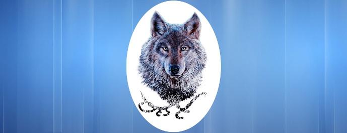 Lobo-Respuestas-689
